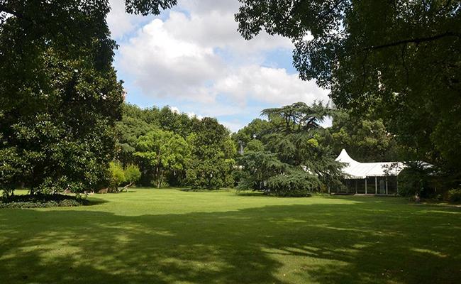 上海瑞金洲际酒店坐拥55000平方米花园绿地.